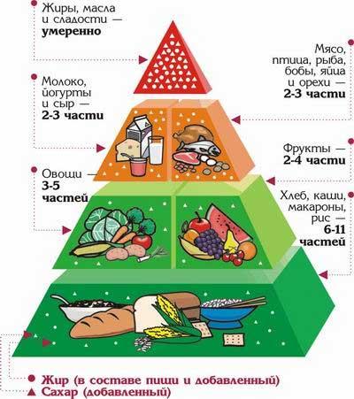 система правильного питания для похудения мужчин